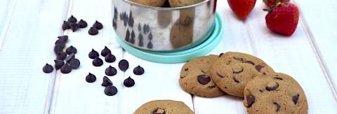 Chocolate Chip Cookies (nut-free)